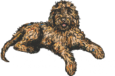 Doodle Rock Rescue - Dallas Tx Doodle Rescue