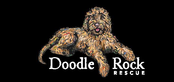 Doodle Rock Rescue – Dallas TX
